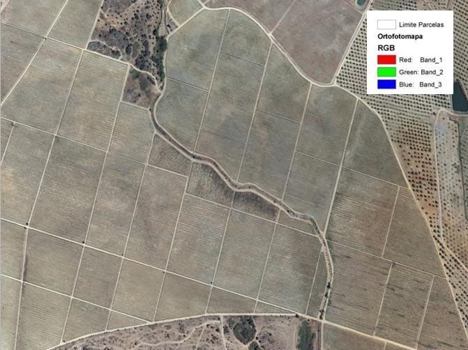 Mapas Representativas dos índices de vegetação e fisiografia Ortofotomapa RGB