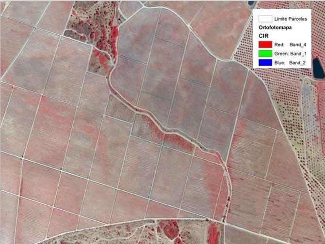 Mapas Representativas dos índices de vegetação e fisiografia ortofotomapa CIR