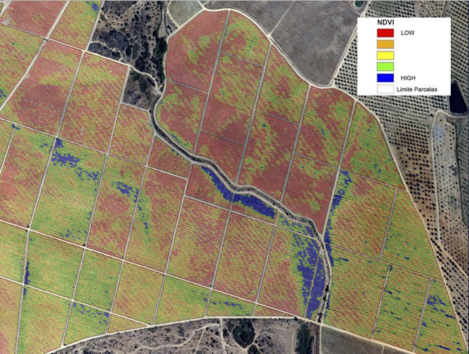 Mapas Representativas dos índices de vegetação e fisiografia NDVI