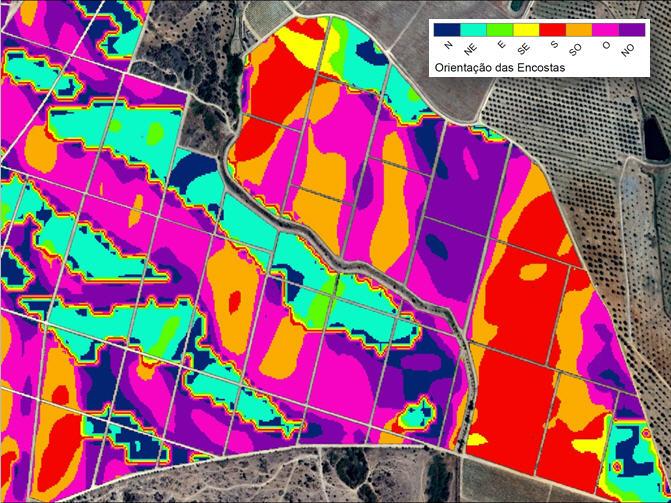 Mapas Representativas dos índices de vegetação e fisiografia orientação das encostas