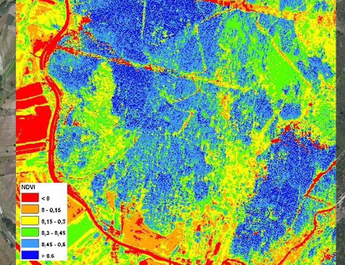 voos de imagem aérea, ortofotomapas a cores naturais e a falsa cor e mapas representativos dos índices de vegetação (ndvi, rvi, pcd)