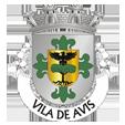 Câmara Municipal de Avis_site
