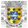 Câmara Municipal de Cabeceiras de Basto_site