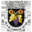 Câmara Municipal de Carregal do Sal_site