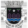 Câmara Municipal de Gouveia_site