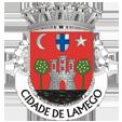 Câmara Municipal de Lamego_site