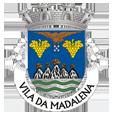 Câmara Municipal de Madalena_site