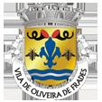 Câmara Municipal de Oliveira de Frades_site