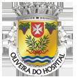 Câmara Municipal de Oliveira do Hospital_site