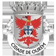 Câmara Municipal de Ourém_site