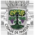 Câmara Municipal de Paredes_site