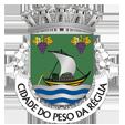 Câmara Municipal de Peso da Régua_site