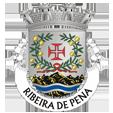 Câmara Municipal de Ribeira de Pena_site