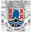 Câmara Municipal de São Pedro do Sul_site