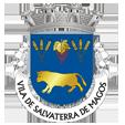 Câmara Municipal de Salvaterra de Magos_site