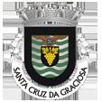 Câmara Municipal de Santa Cruz da Graciosa_site