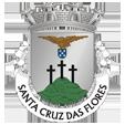 Câmara Municipal de Santa Cruz das Flores_site
