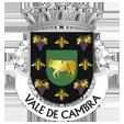 Câmara Municipal de Vale de Cambra_site
