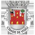 Câmara Municipal de Viseu_site