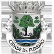 Câmara Municipal do Fundão_site