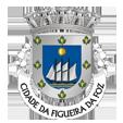 esta_Câmara Municipal da Figueira da Foz_site