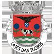 esta_Câmara Municipal das Lajes das Flores_site