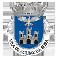 esta_Câmara Municipal de Aguiar da Beira_site