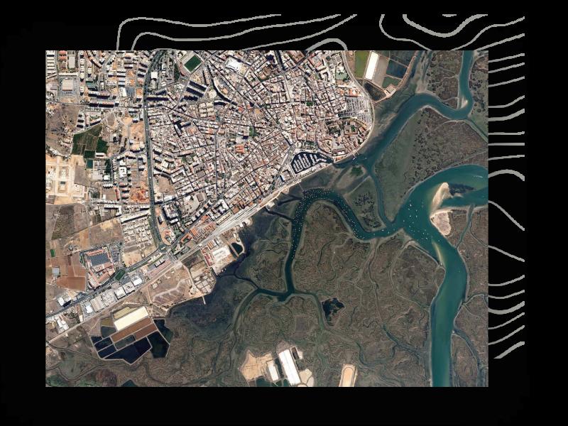 municipia-administracao-publica