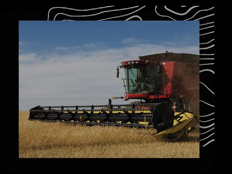 setor_agricultura